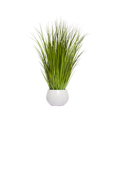 GRASS IN WHITE DIMPLE POT