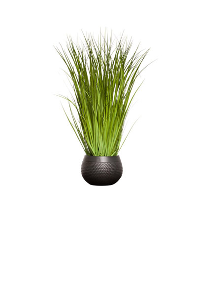 GRASS IN BLACK DIMPLE POT