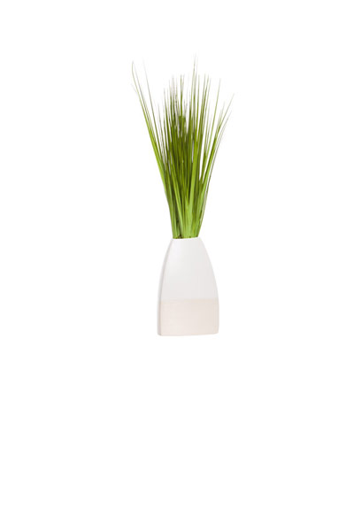 GRASS IN SMALL TWO TONE POT