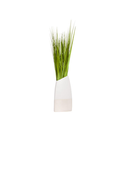 GRASS IN LARGE TWO TONE POT