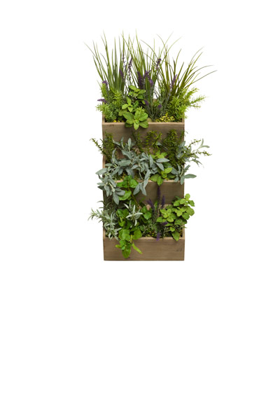 MIXED HERBS IN WOOD WALL POCKET