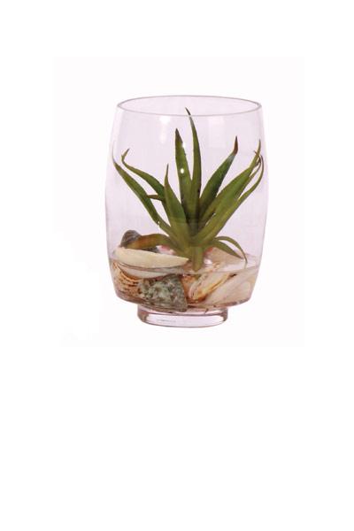 Barrel Vase W/ Succulents & Shell Waterlike
