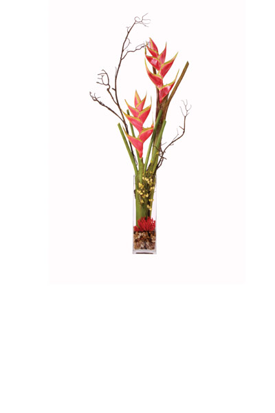 Tall Heliconia / Branch Waterlike