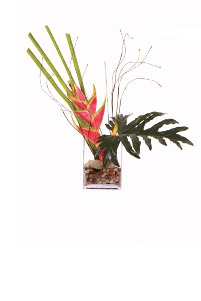 Heliconia / Selloum Waterlike