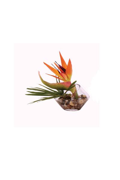 Orange Bird of Paridise/ Palm Leaf