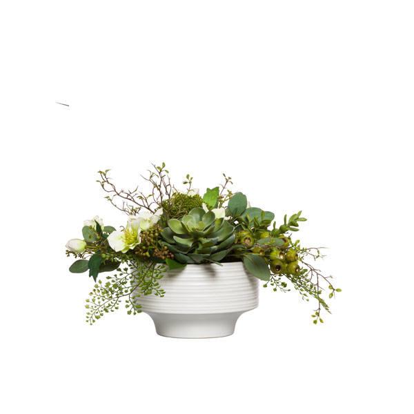 SUCCULENT/FERN IN WHITE PLANTER