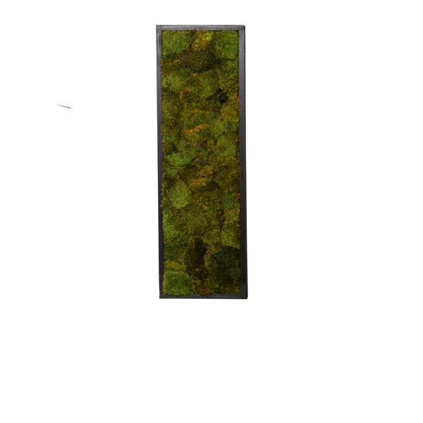 MOOD MOSS WALL HANGING