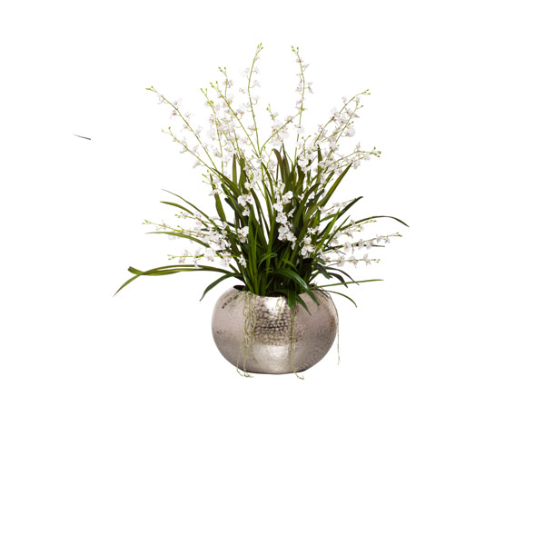 WHITE ONCIDIUM IN SILVER VASE