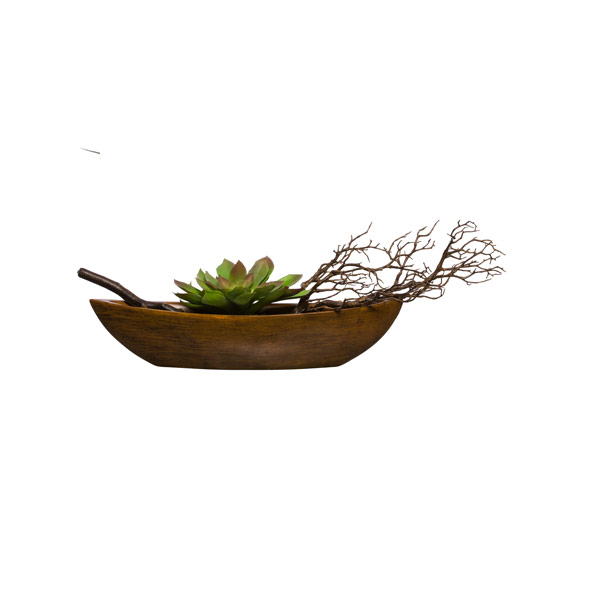 ECHEVERIA/MANZANITA IN SMALL WOOD BOAT