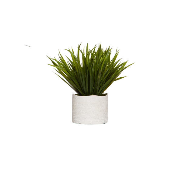 GRASS IN WHITE WAVY POT