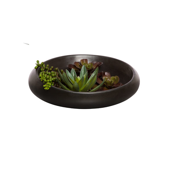 SUCCULENT IN MOON BOWL WATER LIKE