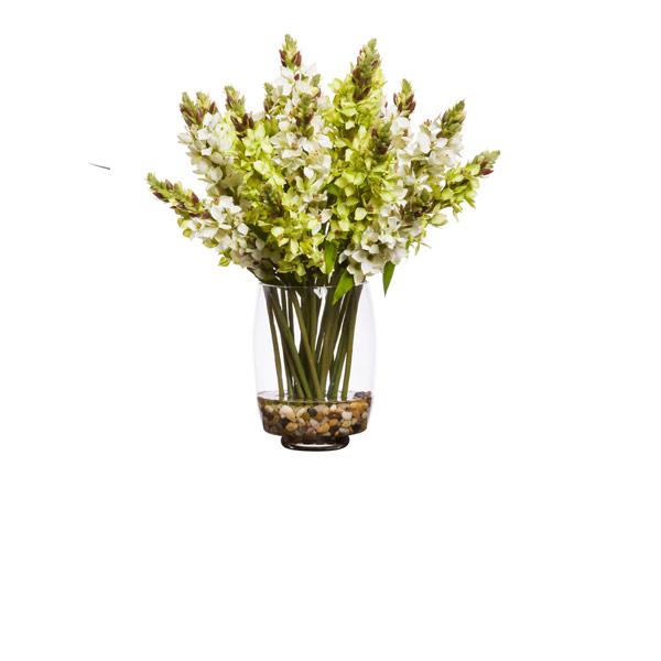 GREEN /WHITE STAR OF BETHLEHEM WATER LIKE
