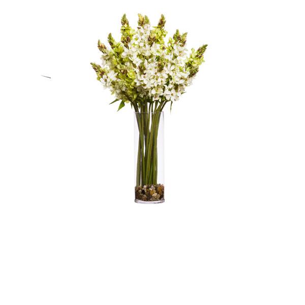 GREEN/WHITE STAR OF BETHLEHEM WATER LIKE