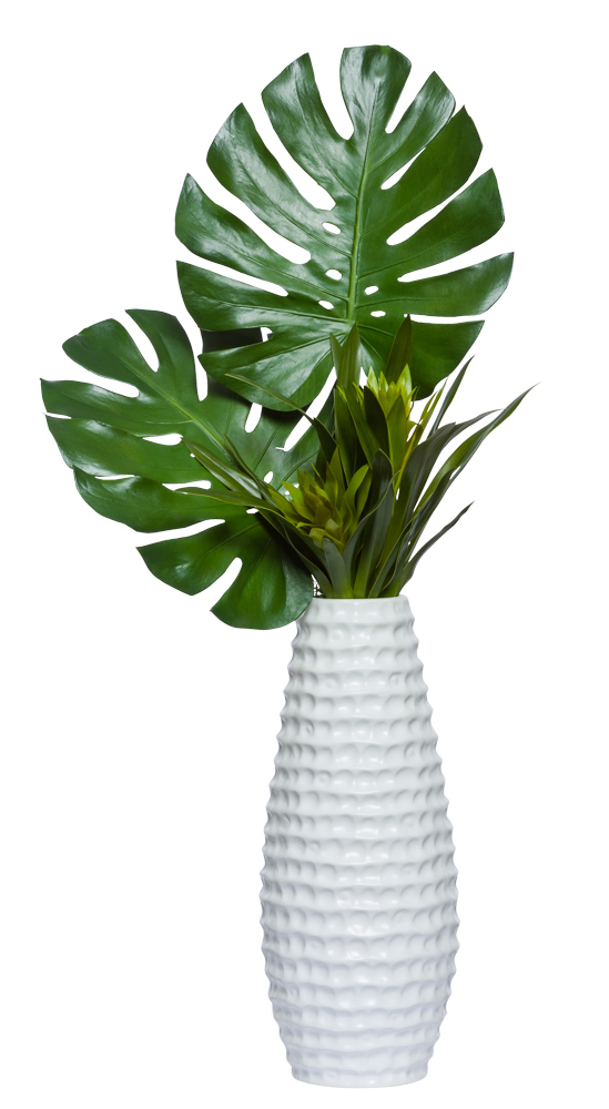 MONSTERA/GINGER IN TALL WHITE VASE