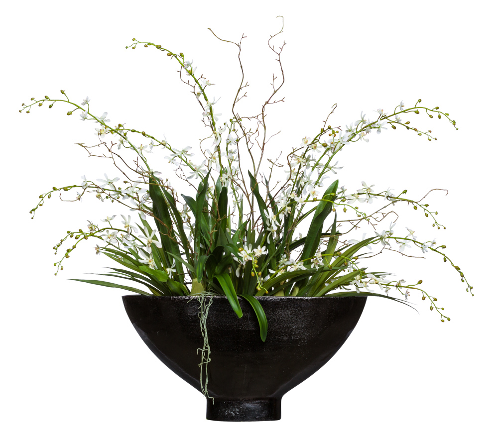 VANDA/WILLOW IN OVAL VASE
