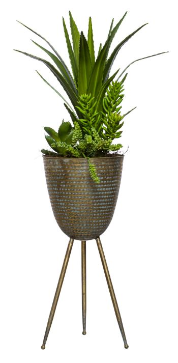 ALOE/SUCCULENTS IN LARGE BRONZE PLANT STAND