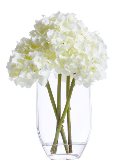 WHITE HYDRANGEA IN OVAL GLASS WATER LIKE