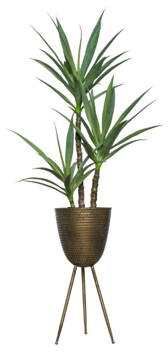 SKINNY YUCCA X 3 IN BRONZE PLANT STAND