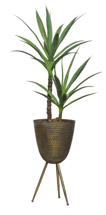 SKINNY YUCCA X 2 IN BRONZE PLANT STAND