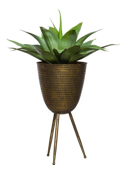 AGAVE IN BRONZE PLANT STAND