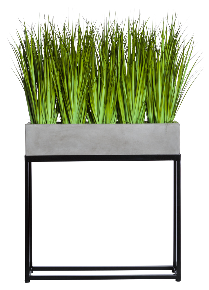 GRASS IN RECTANGLE PLANT STAND