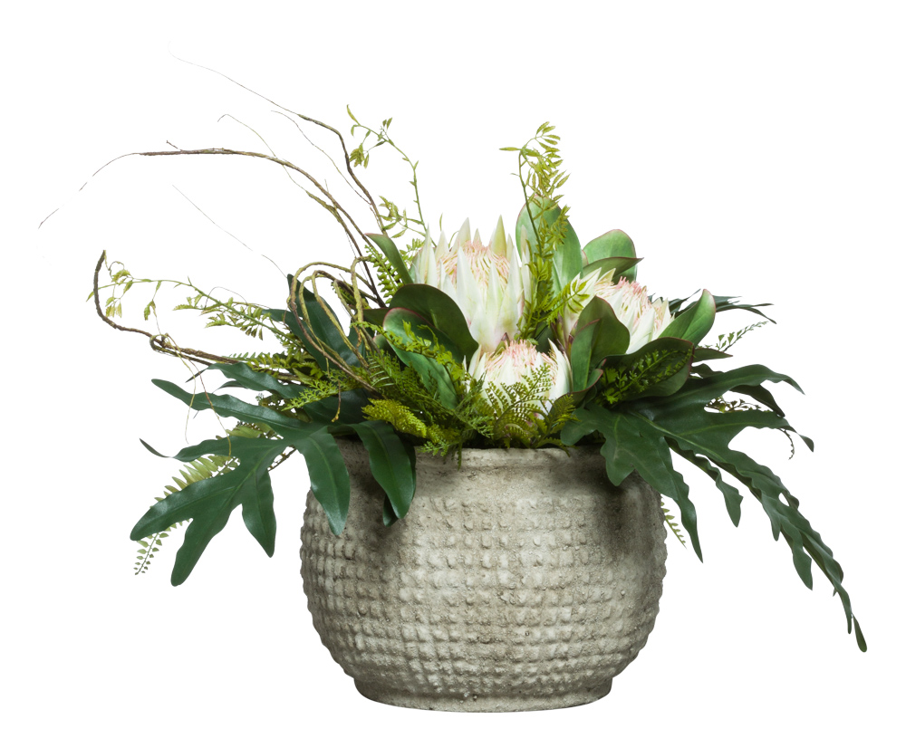 PROTEA/FERN IN GREY BOWL