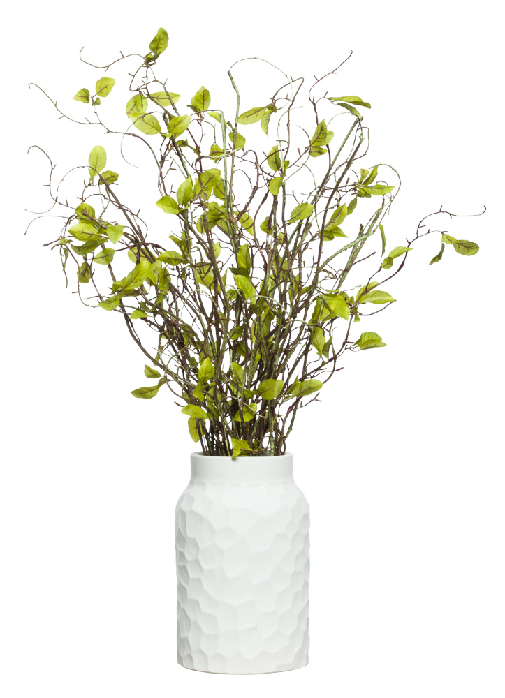 WILLOW BRANCH IN WHITE VASE