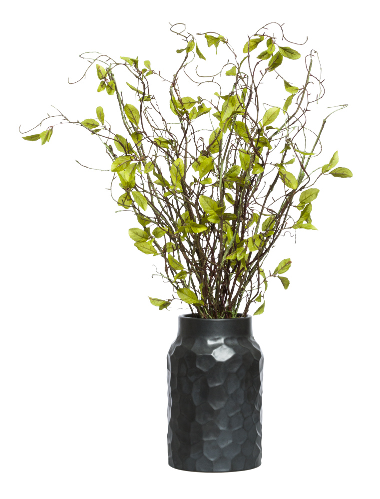WILLOW BRANCH IN BLACK VASE