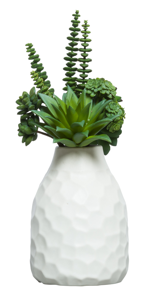 SUCCULENT BUNDLE IN WHITE VASE