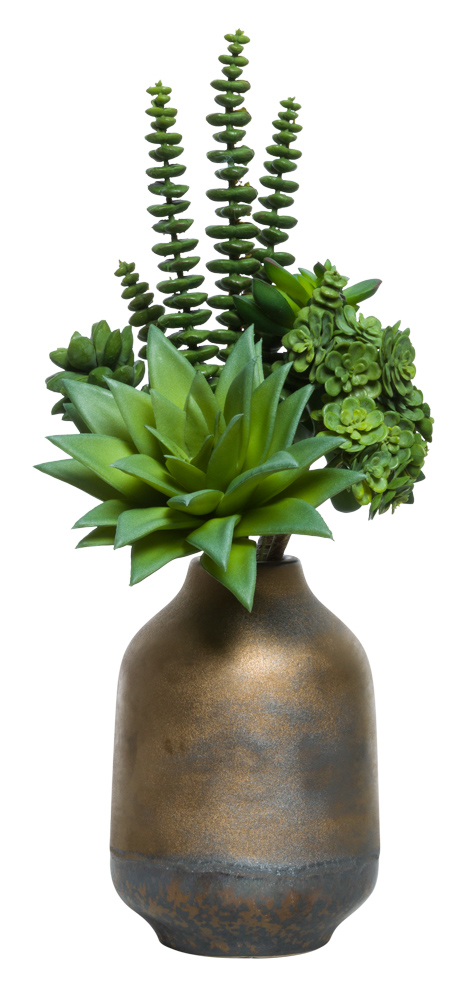 SUCCULENT BUNDLE IN BRONZE POT