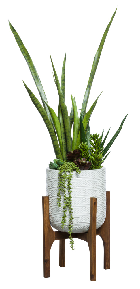 MIXED SUCCULENT/MOTHER IN LAW TONGUE IN WHITE TEXTURED PLANT STAND