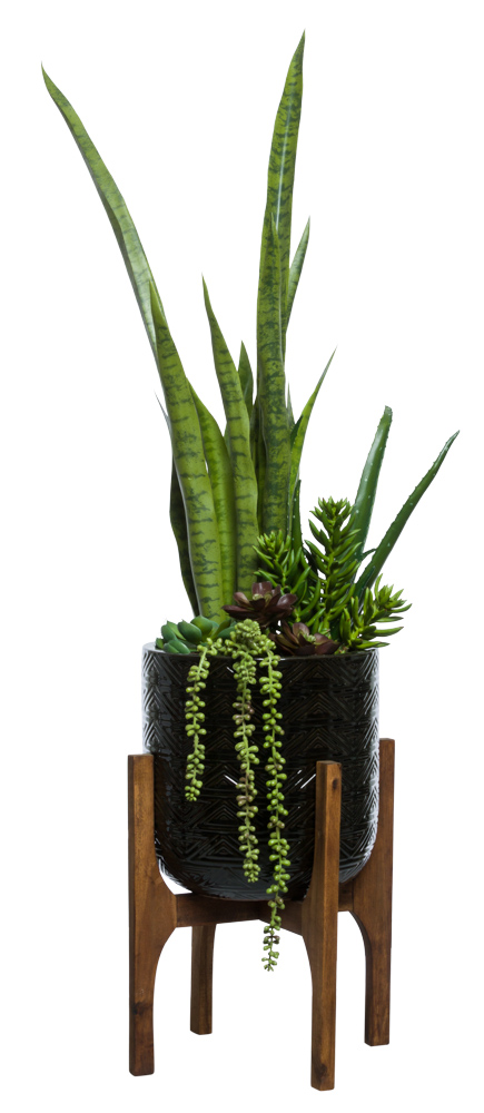 MIXED SUCCULENT/MOTHER IN LAW TONGUE IN BLACK TEXTURED PLANT STAND