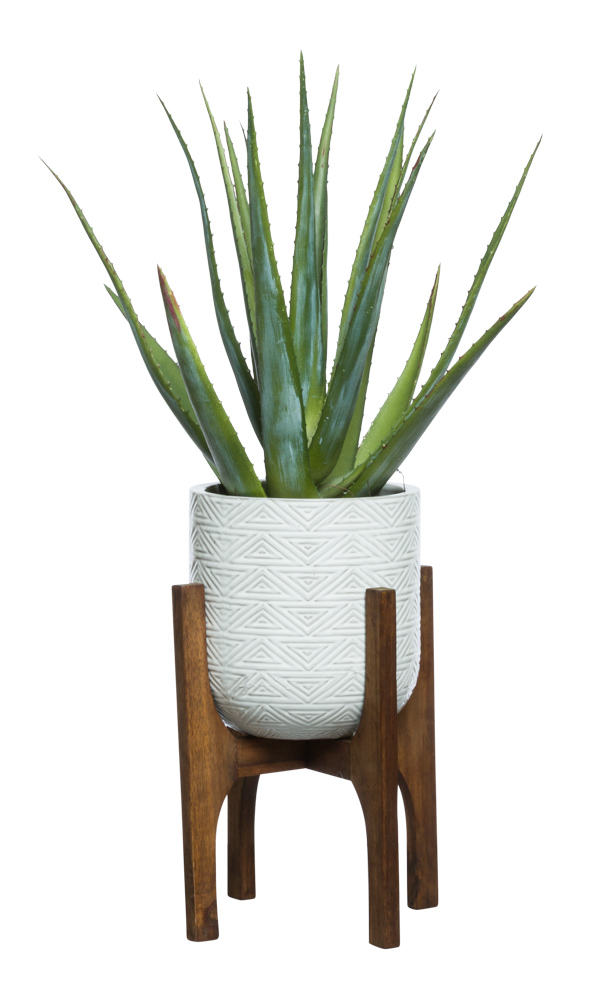 ALOE IN WHITE TEXTURED PLANT STAND