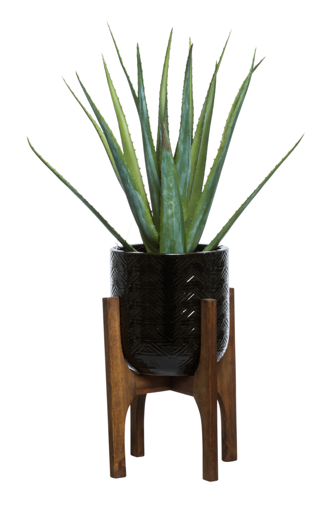 ALOE IN BLACK TEXTURED PLANT STAND