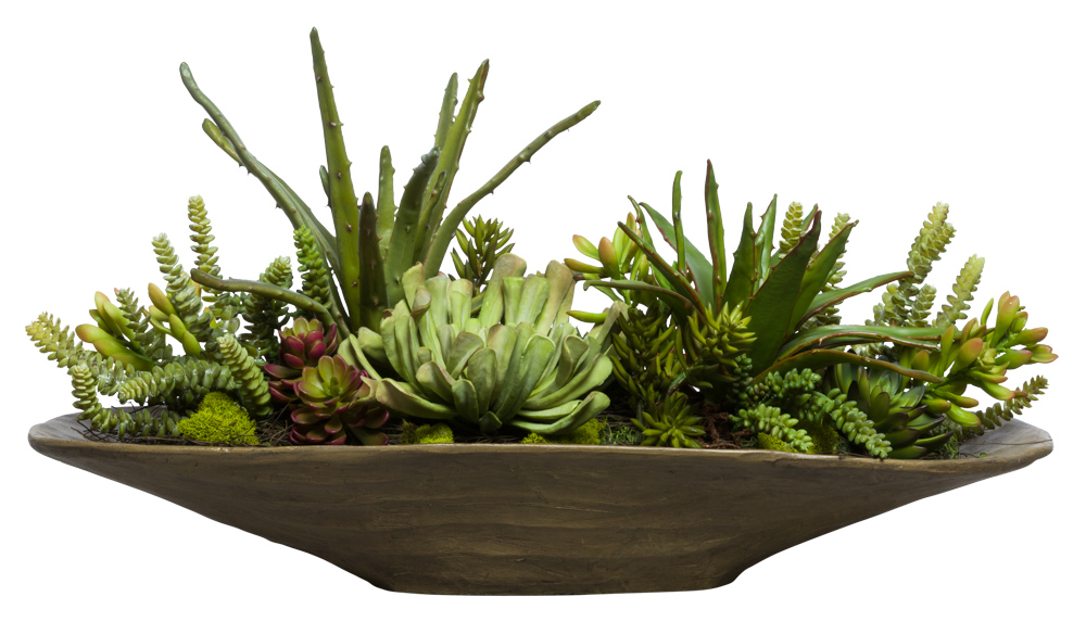 MIXED SUCCULENT IN WOODLIKE OVAL POT