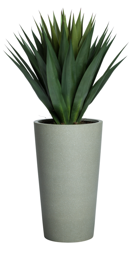 AGAVE IN GREY STONE POT