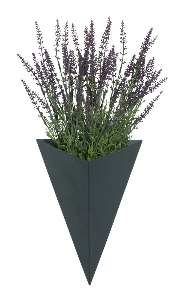 LAVENDER IN LARGE BLACK WALL SCONCE