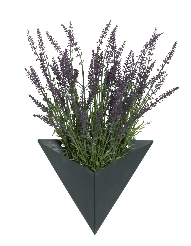 LAVENDER IN SMALL BLACK WALL SCONCE