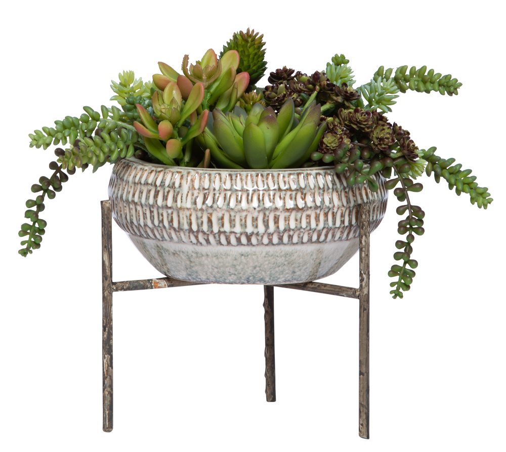 ASST SUCCULENT IN BEIGE BOWL WITH STAND