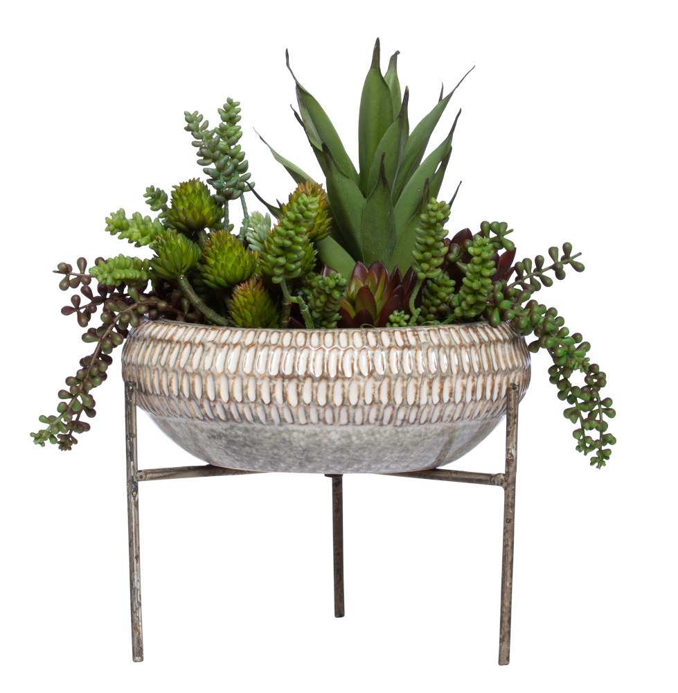 ASST SUCCULENT IN LARGE BEIGE BOWL WITH STAND