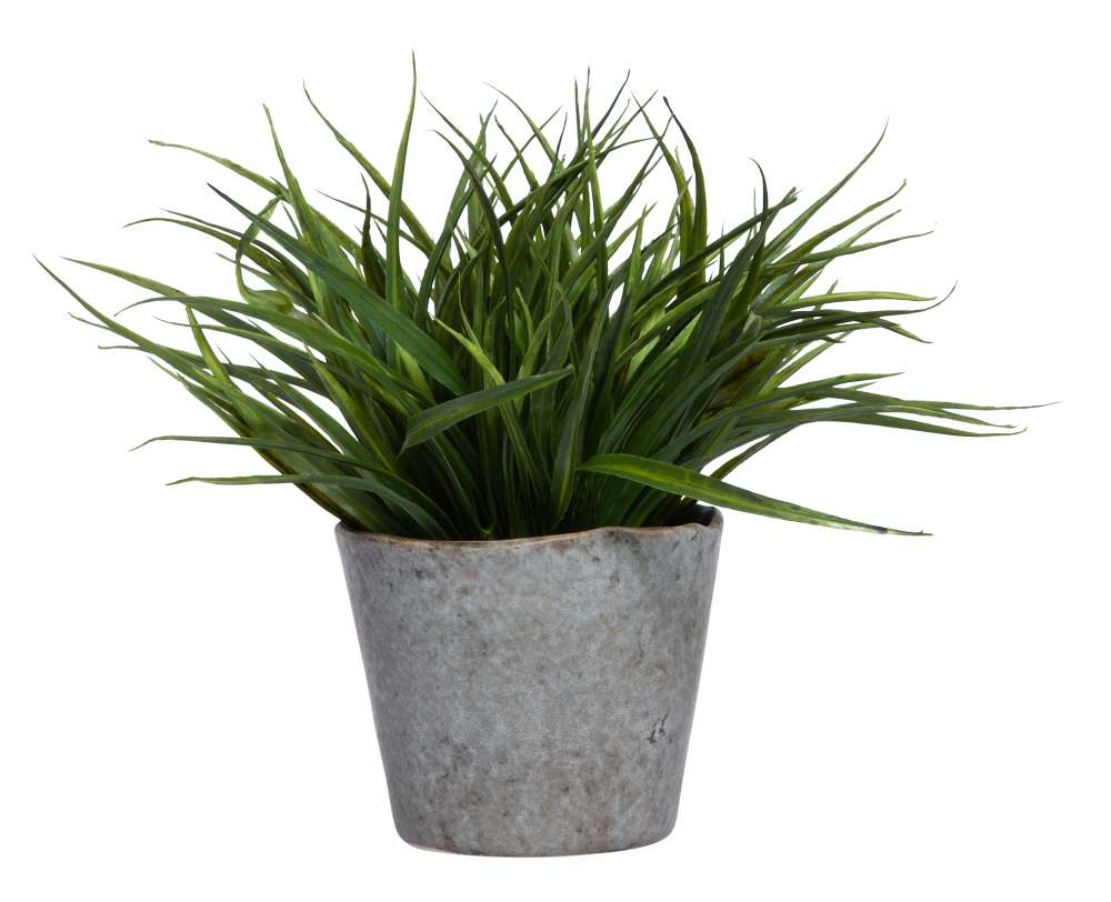 GRASS IN GREY POT