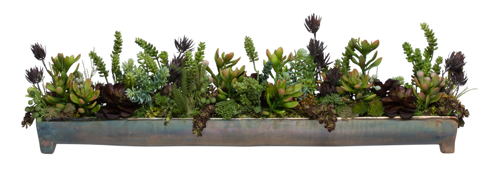 ASSORTED SUCCULENT IN LARGE BRONZE FOOTED TRAY