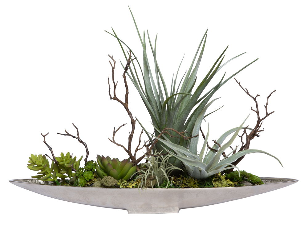 ASSORTED SUCCULENT IN SMALL SILVER BOAT