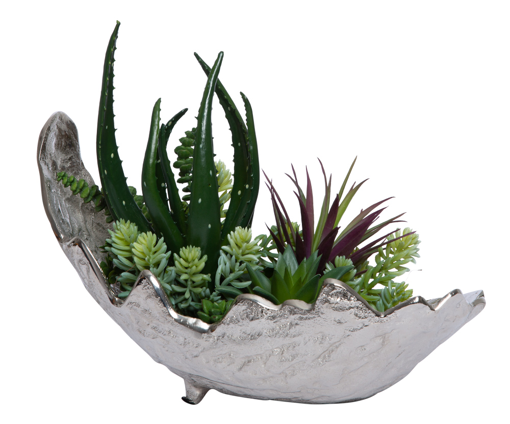 ASSORTED SUCCULENT IN SMALL SILVER LEAF BOWL