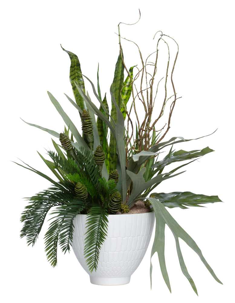 ASSORTED GREENERY/STAGHORN IN LARGE WHITE POT