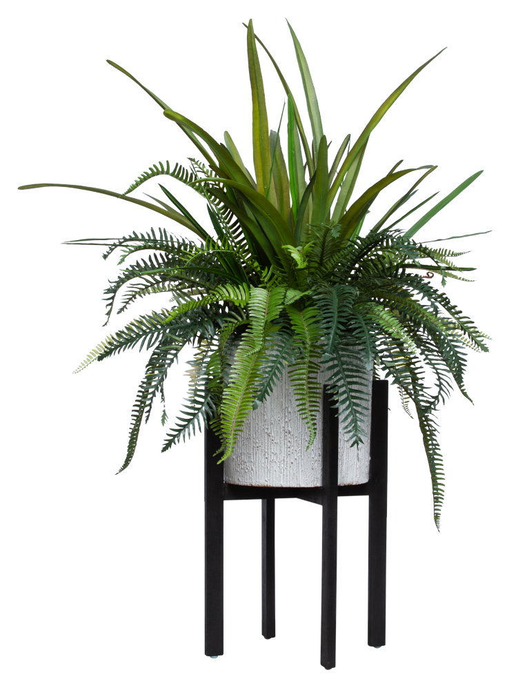 ASST FERN/FOLIAGE IN PLANT STAND