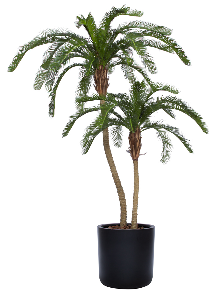 7.5' UV CYCAS PALM IN BLACK SANDSTONE CYLINDER