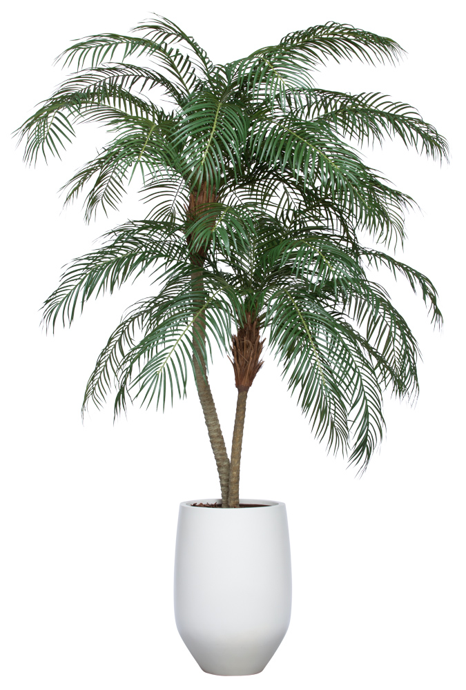 8.5' UV DELUXE PHOENIX PALM IN WHITE SANDSTONE ROUND POT
