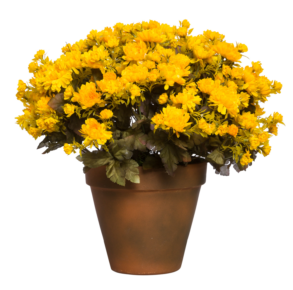 YELLOW MUM POT/SMALL