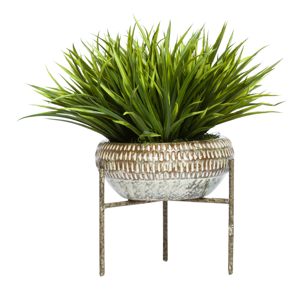 GRASS IN PLANT STAND